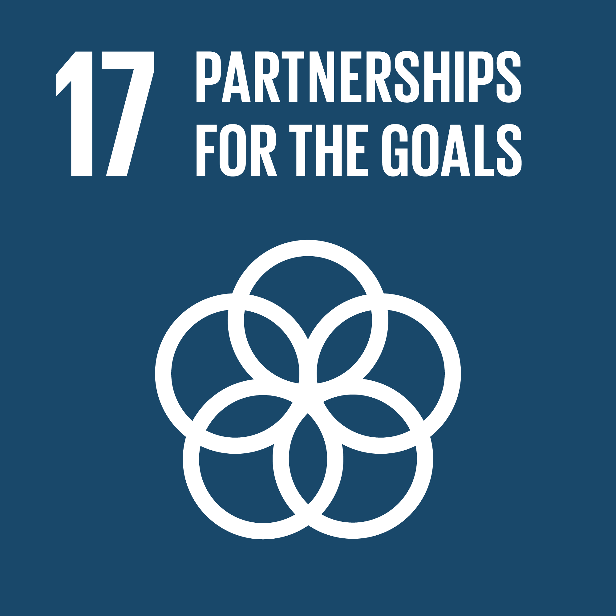Agenda 2030 goal number 17: partnerships for the goals
