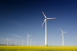 Wind turbines in a field against a blue sky.
